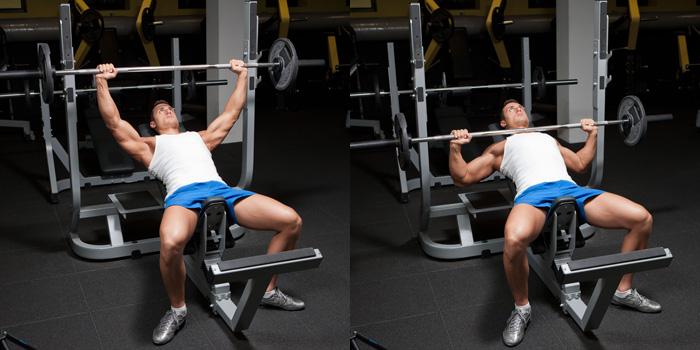 inverted bodyweight ro...